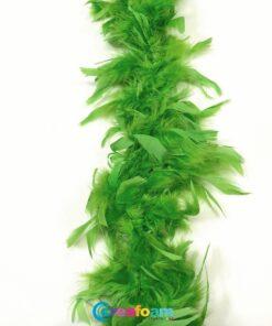 Boa Lime Vert