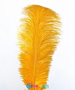 Struisvogelveer oranje