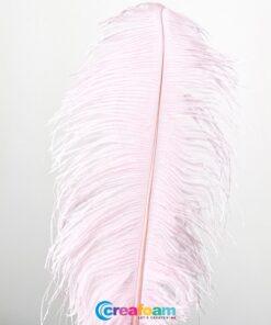 Struisvogelveer Roze