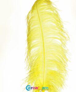 Struisvogelveer geel