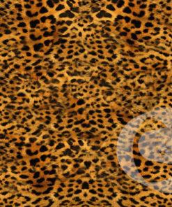 Gomaespuma Leopardo